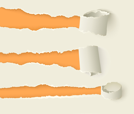 Vector set of torn rolled paper set. Notebook sheets with ripped edges with holes opening orange background. Realistic illustration for your design. Ilustração