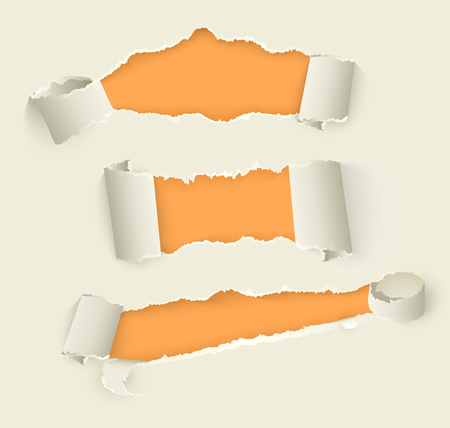 Vector set of torn rolled paper set. Notebook sheets with ripped edges with holes opening orange background. Realistic illustration for your design. Illustration