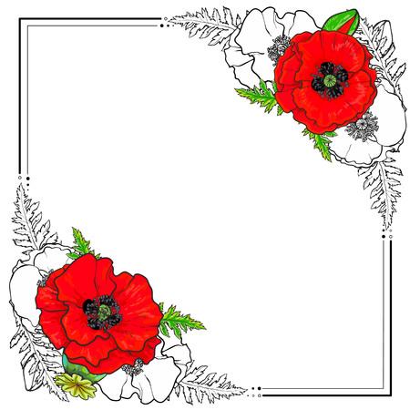 사각형 프레임 빨간색과 색이 지정 된 손으로 그린 양 귀 비 꽃, 흰색 배경에 고립 된 벡터 일러스트 레이 션으로 장식. 손으로 그린 백합 꽃과 텍스트