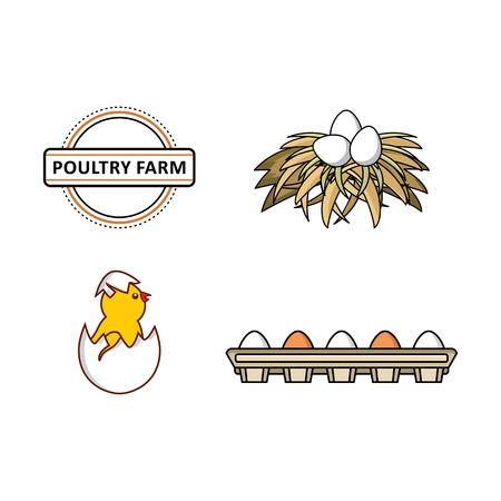 벡터 플랫 농장 가금류 기호 집합입니다. 치킨, 계란에서 부화하는 작은 병아리, 건초 둥지에있는 흰 계란, 판지 상자에있는 계란.