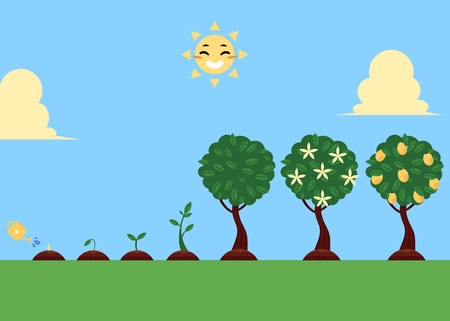 Flat vector tree planting stages, symbols icon set. Green tree apple, pear fruits with foliage, sprouting seedling, watering can pouring seed, smiling sun illustration sky grass landscape background.