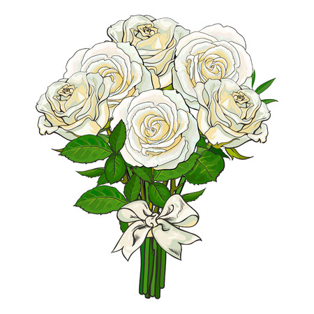 Big bunch, bouquet of white roses tied up with silk ribbon, sketch style, hand drawn vector illustration isolated on white background. Hand-drawn bunch of white roses tied up with ribbon.