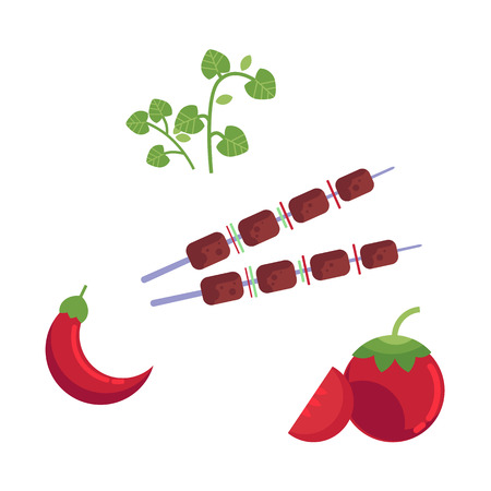 Meat at skewer, sliced tomato chili pepper, parsley vegetables for grill.