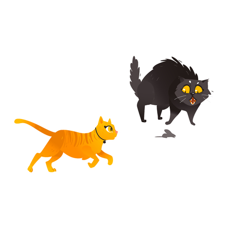 Cartoon vector cat animals set. Funny flat black, orange domestic pets in different poses running hunting mouse. Cute character Halloween holiday symbols isolated illustration, white background. Illustration