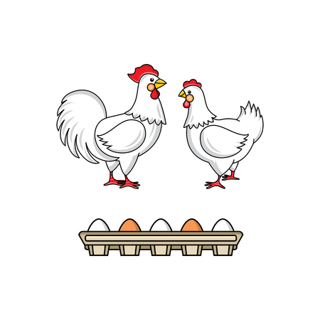 vector flat hand drawn white hen chicken, rooster, cock with red crest, eggs in cardboard box set. Isolated illustration on a white background. Farm poultry object for advertising, poster design.