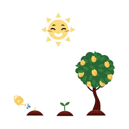 Vector flat tree planting stages, symbols icon set. green tree apple, pear fruits with foliage, sprouting seedling, watering can pouring seed, smiling sun. Isolated illustration forest, garden plants