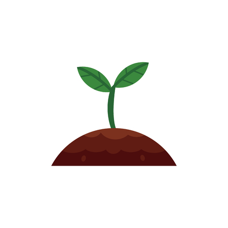 Vector flat green abstract sprouting from ground seedling, sapling icon. Isolated illustration with forest, garden plant sprout, spring or summer, ecology and environment symbol on white background.