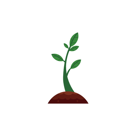 Vector flat green abstract sprouting from ground seedling, sapling icon.