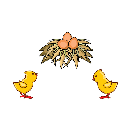 Vector cartoon hand drawn yellow colored small chicks and brown egg in hay nest. Isolated illustration on a white background. Farm poultry chicken objects for advertising, poster design