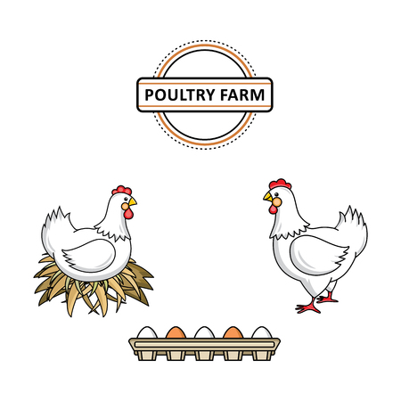 Vector flat white hen chicken at hay nest, rooster, cock with red crest, eggs in cardboard box set. Isolated illustration white background. Farm poultry object for advertising, poster design. Stock Vector - 96641471