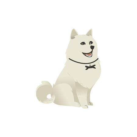 Cute fluffy little dog sitting straight, three quarters full length portrait, flat cartoon vector illustration isolated on white background. White fluffy dog, puppy character sitting and looking up