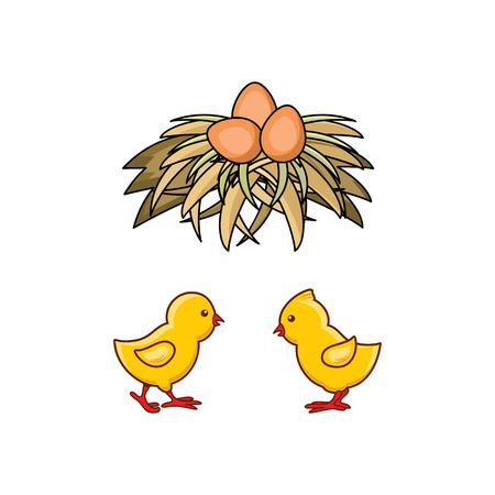 vector cartoon hand drawn yellow colored small chicks and brown egg in hay nest. Isolated illustration on a white background. Farm poultry chicken objects for advertising, poster design Stock Illustratie