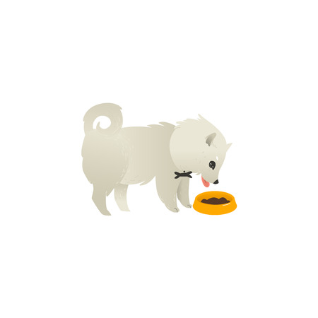 Cute fluffy little dog eating from bowl, side view portrait, flat cartoon vector illustration isolated on white background. White fluffy dog, puppy character eating food from a bowl
