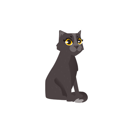 Sitting cute fluffy black cat, flat cartoon vector illustration isolated on white background. Black cat character, mascot, pet sitting with tail around its paws Illustration