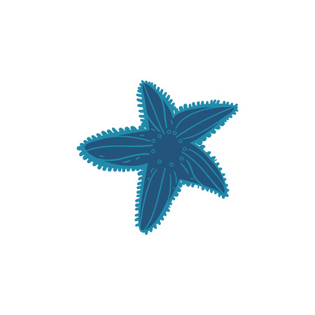 Beautiful blue starfish with decorations isolated on white background. Sea stars and shells - summer beach vacation and holiday time concept. Flat cartoon style vector illustration.