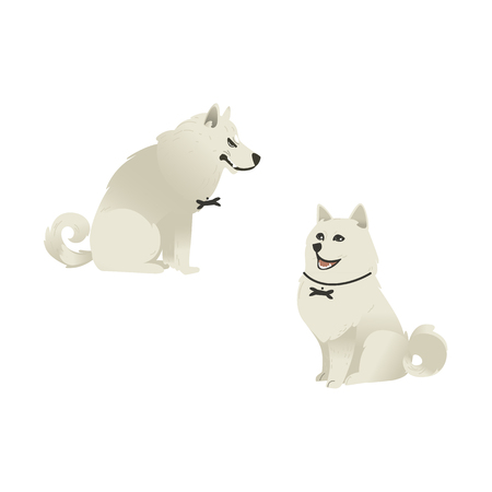 Set of sitting white fluffy dogs with different emotions on face happy and evil, isolated on white background. Cute cartoon style pets vector illustration.