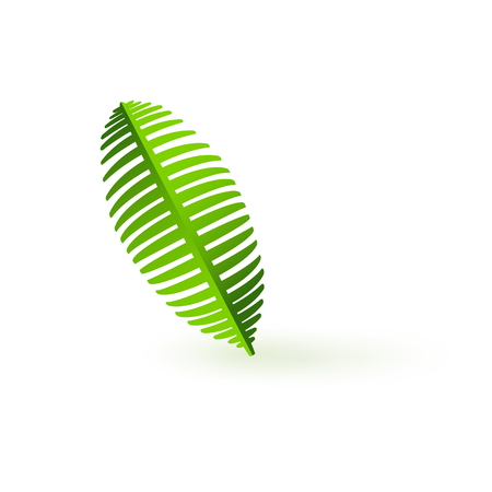 Fresh green palm leaf branch isolated on white background. Silhouette of exotic tropical plant - bio organic and Eco natural element. Cartoon vector illustration.