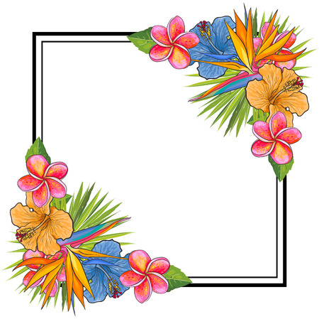 Tropical flowers and palm leaves bouquet elements at corners of square shape with copy space. Isolated vector illustration of hand drawn exotic blooms for greeting card or summertime invitation.