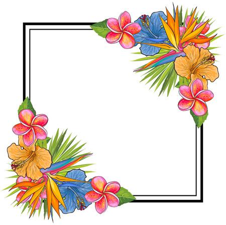 Fleurs tropicales et éléments de bouquet de feuilles de palmier aux coins de forme carrée avec espace de copie. Illustration vectorielle isolée de fleurs exotiques dessinées à la main pour carte de voeux ou invitation d'été. Banque d'images - 98615358