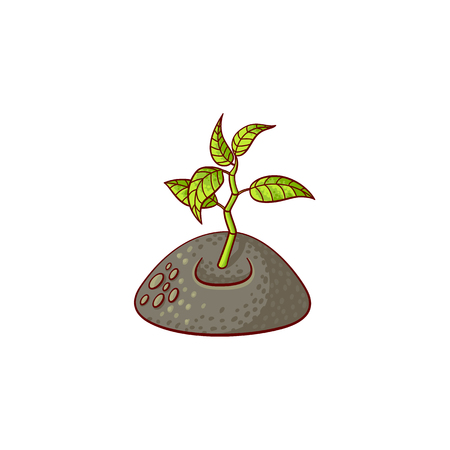 Sprouting from ground seedling, sapling icon. Illustration with forest, garden plant. Vector sketch spring or summer, ecology and environment symbol on isolated background.