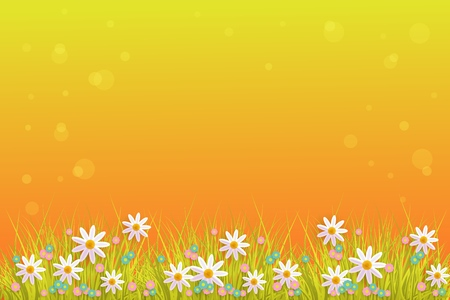Green meadow grass, daisy chamomile flowers on orange sunset bubble background. Spring summer sale, festive template for retail poster and advertising design wtih space for text. Vector illustration