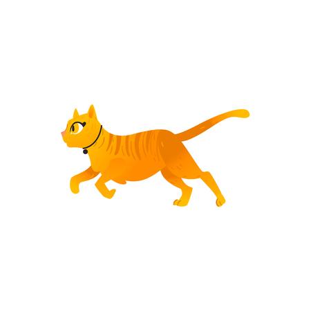 Cartoon schattige oranje kat in kraag dier vrolijk uitgevoerd. Grappig hand getekend kitten huisdier. Binnenlands schattig katachtig katkarakter. Kinderen ontwerpelement. Vector platte illustratie geïsoleerd. Vector Illustratie