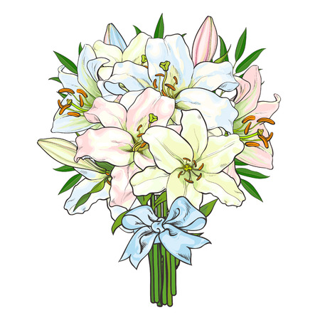 Big bunch, bouquet of lily flowers tied up with light blue ribbon, sketch style, hand drawn vector illustration isolated on white background.