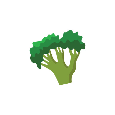 Ripe raw broccoli icon. Green healthy food, vegetable full of vitamins. Fresh nutritions source, dieting and healthy life style symbol. Vector flat illustration isolated Stock Illustratie