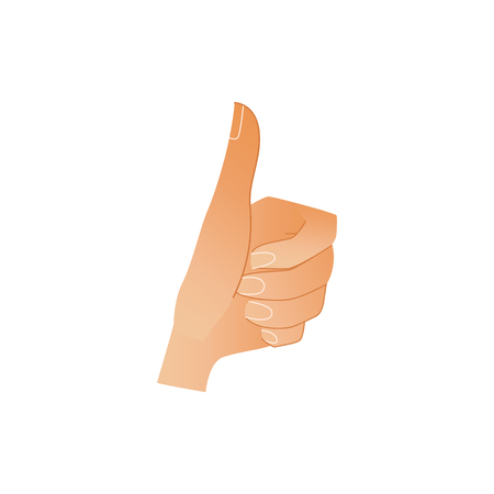 Human hand showing thumbs up gesture isolated on white background - wrist with ok and like sign. Cartoon vector illustration of body part for success concept.