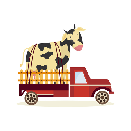 Farming and agriculture concept with large cow in back of truck car isolated on white background. Delivery of fresh organic products theme in flat cartoon vector illustration.