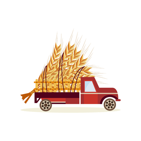 Agricultural harvest concept with big wheat ears in back of truck car isolated on white background - delivery of fresh healthy organic products in flat cartoon vector illustration. Banque d'images - 103238182