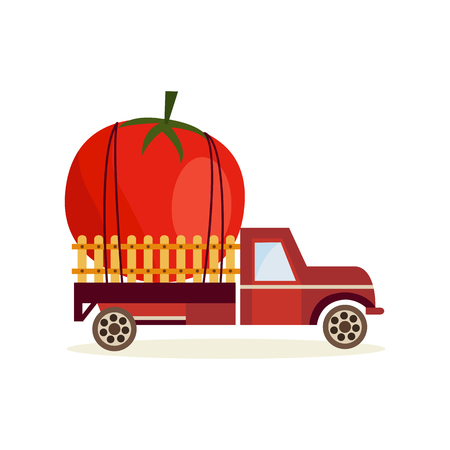 Farming harvest concept with big ripe tomato in back of truck car isolated on white background - delivery of fresh healthy organic products in flat cartoon vector illustration. Illustration