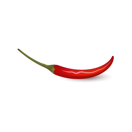 Red fresh chili pepper pod with green tail - whole hot spice icon isolated on white background. Realistic extra spicy vegetable ingredient of traditional mexican food, organic vector illustration. Banque d'images - 103626897