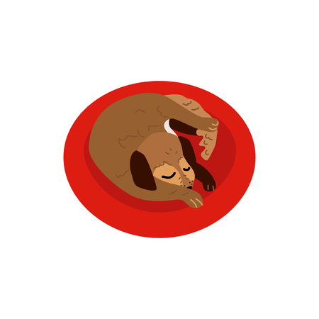 Flat style cute dog animal sleeping curled up side view icon. Funny hand drawn puppy pet. Domestic adorable brown character, design element. Vector illustration isolated.