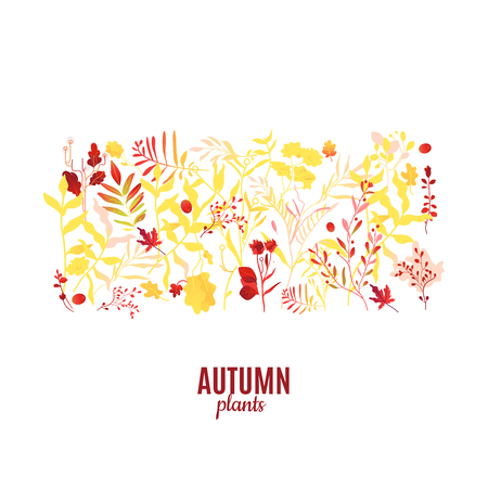 Abstract autumn red, orange plants and flowers icon pattern. Meadow, garden romantic wedding invitation card, autumnal seasonal holiday, harvest decoration element. Floral vector illustration