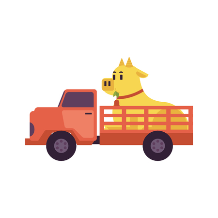 Flat farmer truck pickup delivering livestock animals - cow in body. Farming transportation and organic food. Vector isolated illustration Illustration