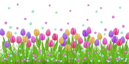 Spring floral border with colorful tulips and little blooms on green grass isolated on white background - decorative frame with fresh seasonal flowers on lawn in vector illustration.