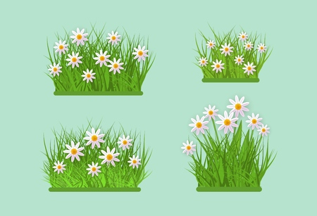 Daisy and chamomile on green meadow grass leaves bush icon set. Spring summer object for retail, sale poster and advertising design. Vector isolated illustration