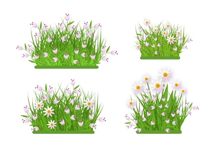 Daisy, chamomile and bellflowers on green meadow grass leaves bush icon set. Spring summer object for retail, sale poster and advertising design. Vector isolated illustration Çizim