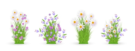 Daisy, chamomile, cornflower and bellflower on green meadow grass leaves bush icon set. Spring summer flower object for retail, sale poster and advertising design. Vector isolated illustration