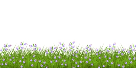 Spring or summer floral border with blue wild flowers on fresh green grass isolated on white background - decorative frame with beautiful blooms on greenery in vector illustration.