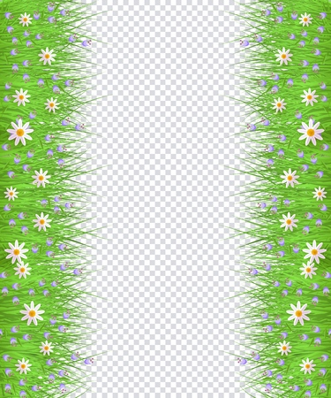 Green meadow grass, daisy chamomile flowers border frame, template on transparent background. Spring summer sale template for retail poster and advertising design wtih text space. Vector illustration Illustration