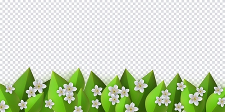 Floral border with white apple or cherry blossoms on green leaves on transparent background - decorative frame with fresh seasonal flowers and greenery in vector illustration.