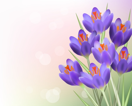 Purple tulip flowers with green leaves on blurred abstract background template. Spring summer sale template for retail poster and advertising design wtih text space. Vector illustration