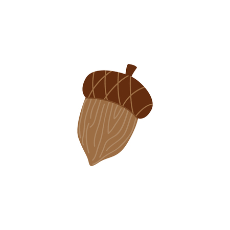 Mature brown acorn - oak nut for seasonal autumn design in flat style. Vector illustration of tree seed and animal food - fall natural decorative element isolated on white background. Иллюстрация