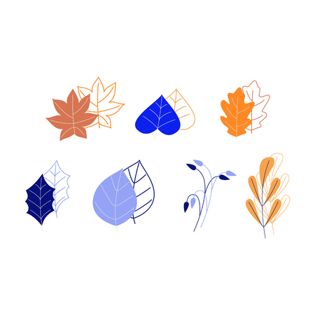 Plant leaves painted and linear set isolated on white background - decoration elements of trees and flowers leaves for using in your design in flat style, vector illustration. Stock Illustratie
