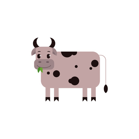 Cow with black spots chewing green leaves in flat style isolated on white background - cute standing farm domestic animal. Side view of milk livestock in cartoon vector illustration.
