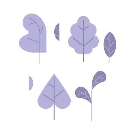 Violet plant leaves set isolated on white background. One color decoration elements of trees and flowers leaves for using in your design in flat style, vector illustration.