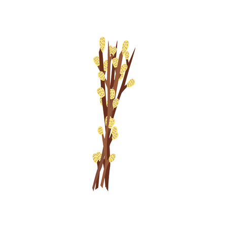 vector flat willow branches, twigs with buds icon. Easter spring holiday festive decoration element for your design. Isolated illustration on a white background.