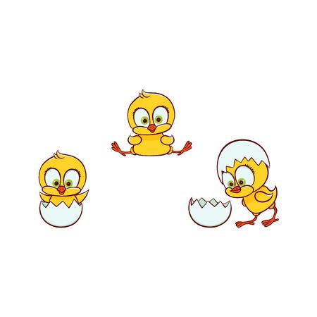 vettore piatto carino baby pollo piccolo pulcino divertente cova dal set di uova. Animale uccello piatto, illustrazione isolata su uno sfondo bianco, pollame, oggetto di design per bambini di fattoria.